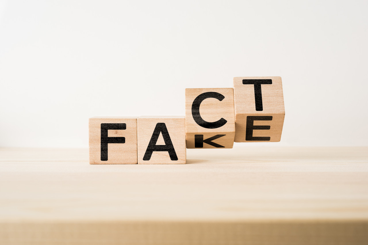 Fake news, canular, intox : comment distinguer le vrai du faux ?